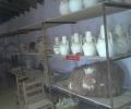 excursion_agosto_2012-03-06-11-36-31_1000x750